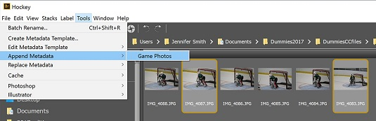 metadata template Adobe Bridge CC