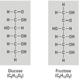 anatomy-monosaccharides-feature