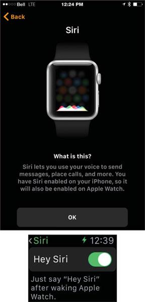 apple-watch-siri-effectively