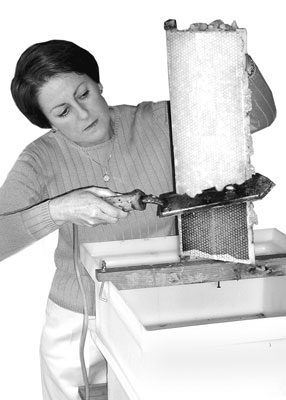 beekeeping-wax-capping