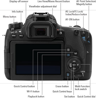 canon77d-back
