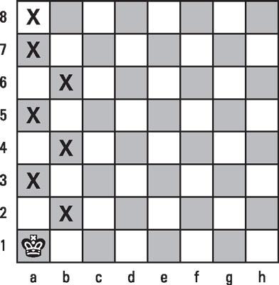 chess-king-skates