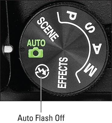 d5600-auto-flash