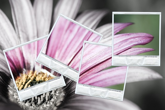 restore color to photos with deep learning applications