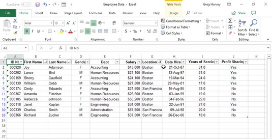 Excel filters