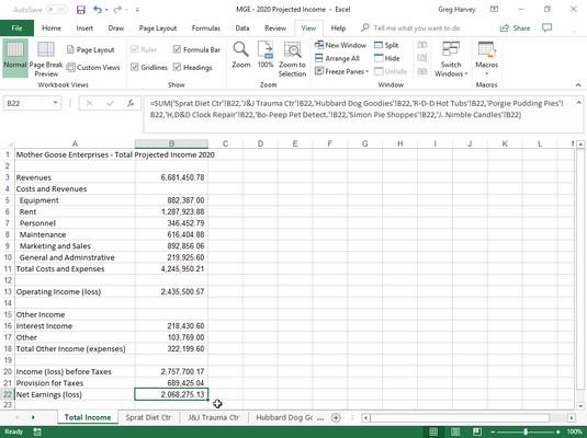 Total Income worksheet after SUM formula