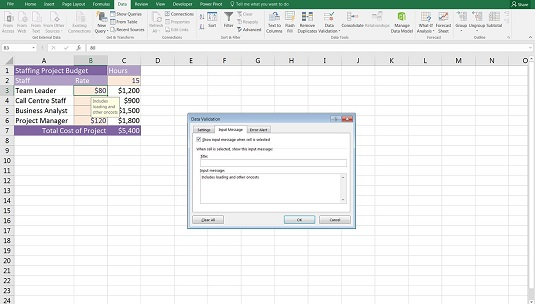 financial modeling data valifation input message