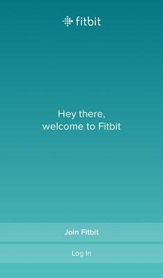 Fitbit initial screen
