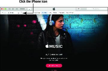 iphone-for-seniors-6e-iphone-icon