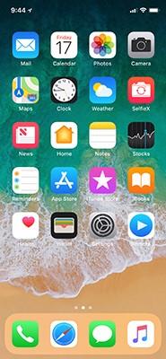 iphonex-home