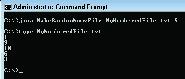MakeRandomNumsFile in java