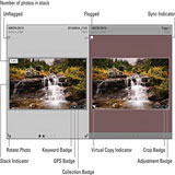 lightroom-grid-view-feature