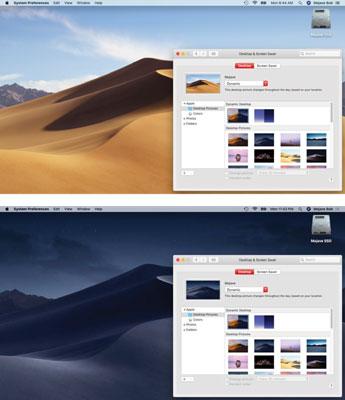 mojave-dynamic-desktop