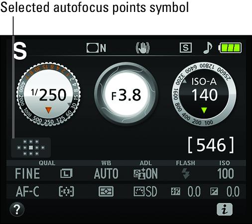 Nikon D3500 Autofocus points symbol