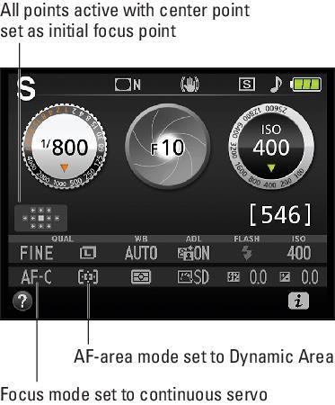 Dynamic settiongs Nikon D3500
