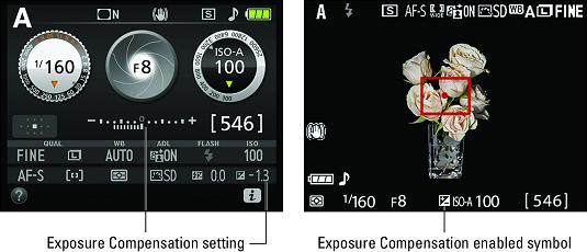 enable Exposure Compensation Nikon D3500