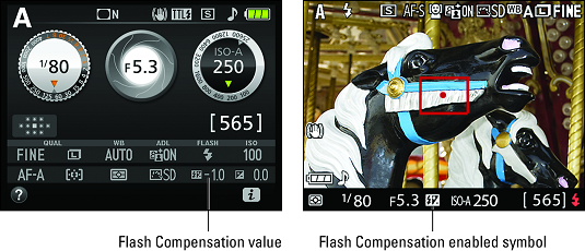 Flash Compensation symbols Nikon D3500