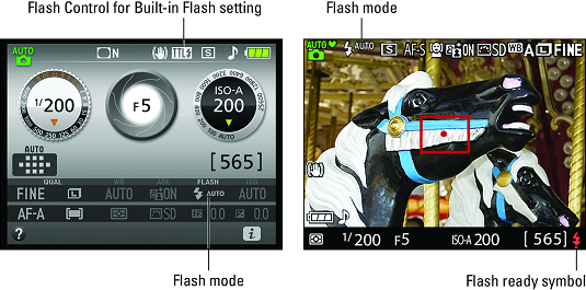 Flash mode Nikon D3500