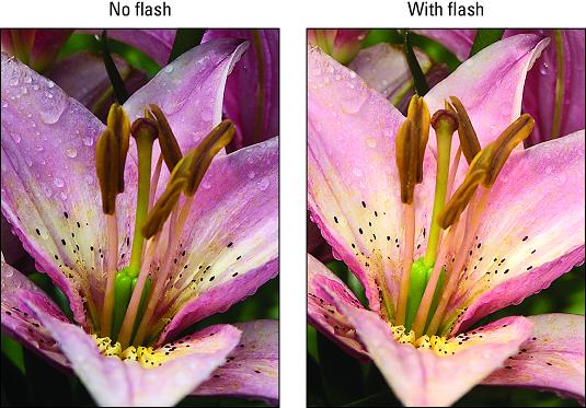 Nikon D3500 flash warming effect