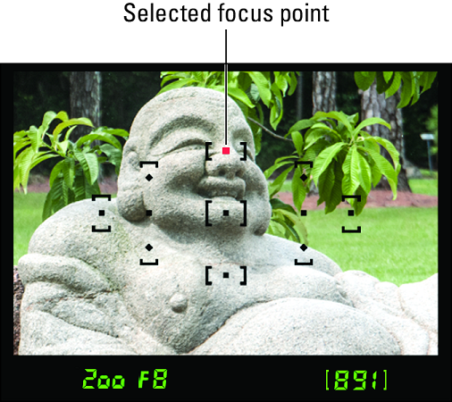 Nikon D3500 focus point