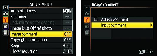 Nikon D3500 text comments