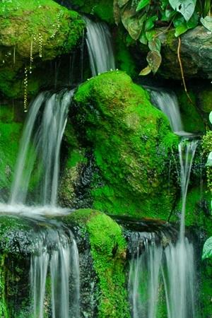 Nikon D3500 waterfall landscape