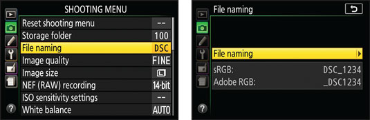 nikon-file-naming