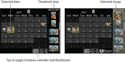 nikond-calendar