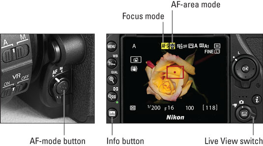 nikond-focus-mode
