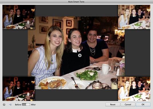 photoshop-elements-15-auto-smart-tone