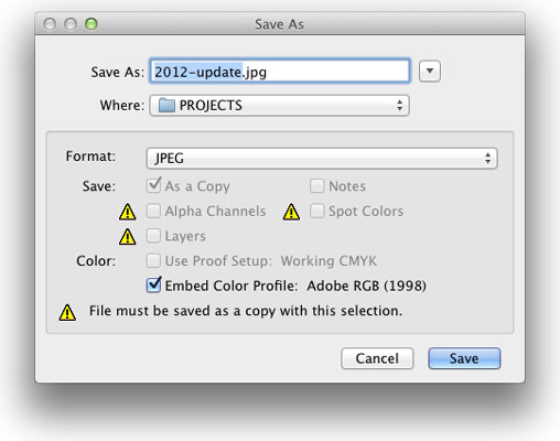 Photoshop File Formats: Which Do You Need? - dummies