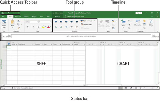 Introduction to Microsoft Project 2019 - dummies