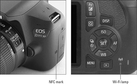 Transferring Files from your Canon EOS Rebel T7/2000D to a