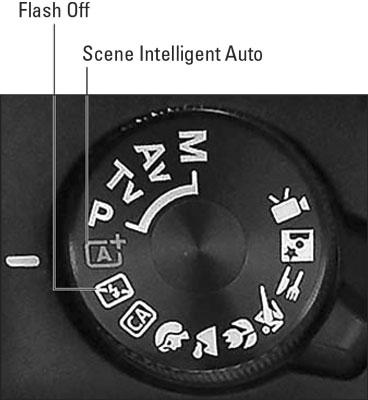 ebel-t7-scene-intelligent-auto