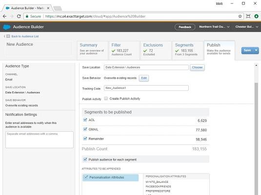 Salesforce Marketing Cloud audience details