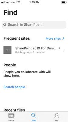 SharePoint Find screen