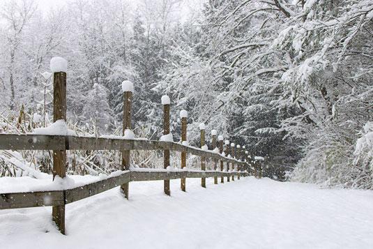 slrphoto-snow