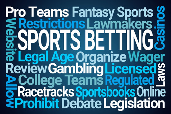 fantasy sports betting for dummies