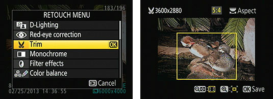 Rotate the Command dial to change the proportions of the crop box.