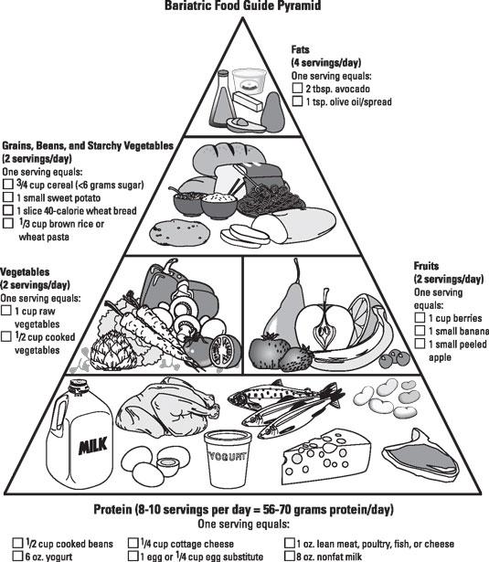 food pyramid for teen
