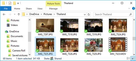 Windows 10 picture password