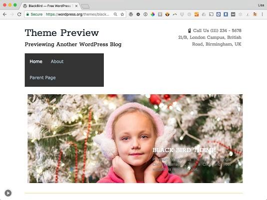 BlackBird WordPress theme