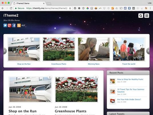 WordPress theme iTheme2