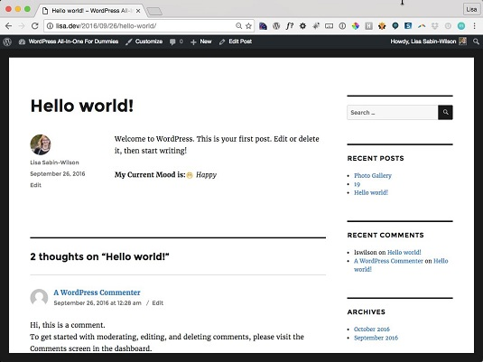wordpress-aio-3e-custom-fields